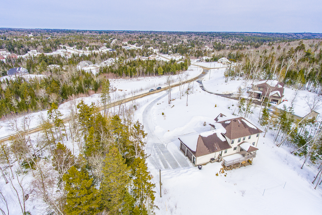 winter photo Golden eagle drone-2