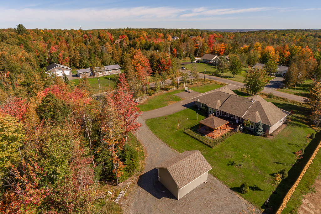 fall drone with Fence-3